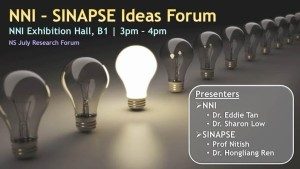 SINAPSE-NNI-IdeasForum